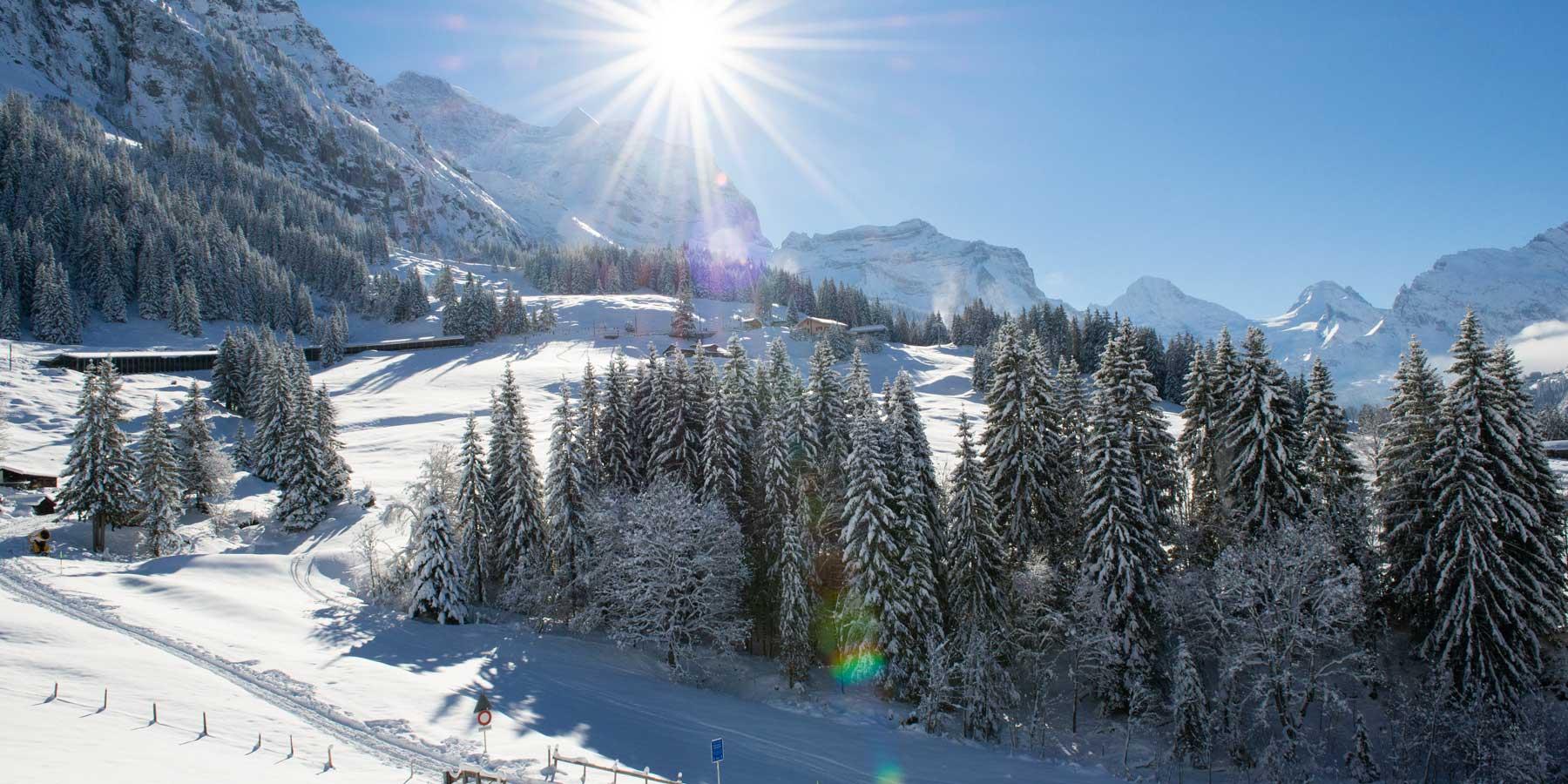 ski-village-winter