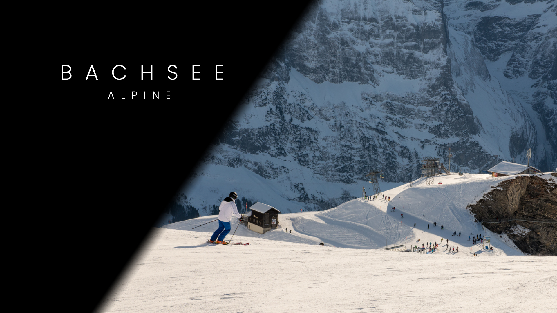 Bachalpsee Alpine