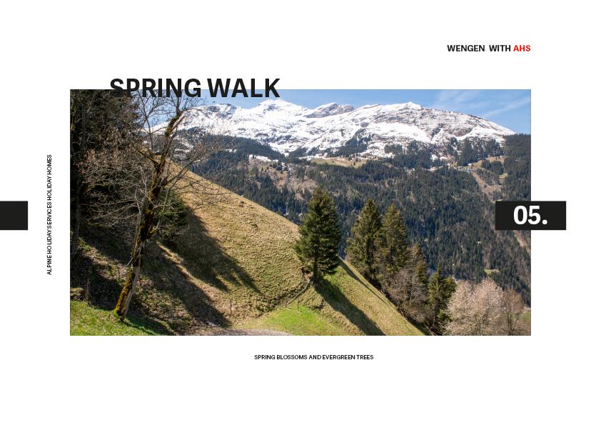 Spring Walk Wengen