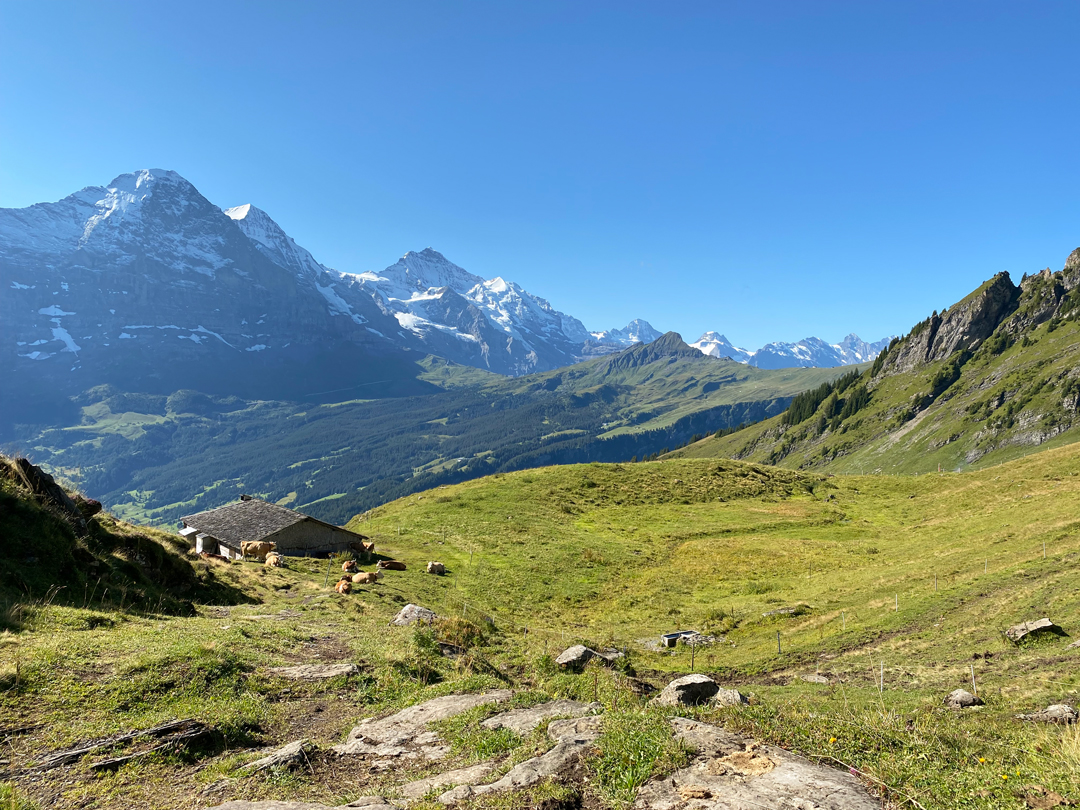 hiking-to-faulhorn-summit